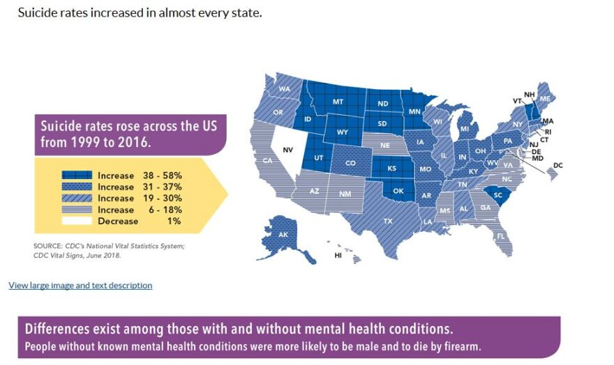 cdc_suicide_rate_map.jpg