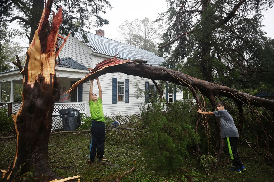 Jacob Fernandez (left) and Josh Fernandez play around on the tree that fell near their home when Hurricane Florence passed through the area on Friday in Bolivia, N.C.