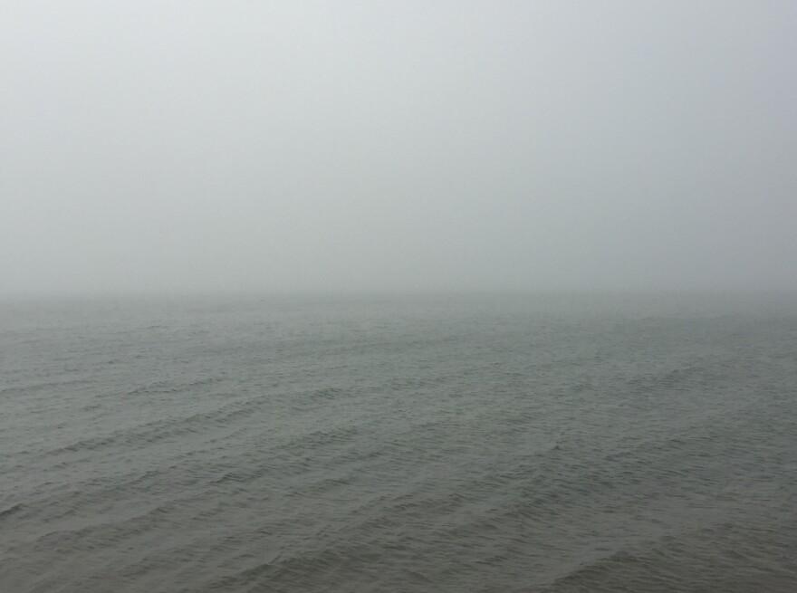 fog__0.jpg
