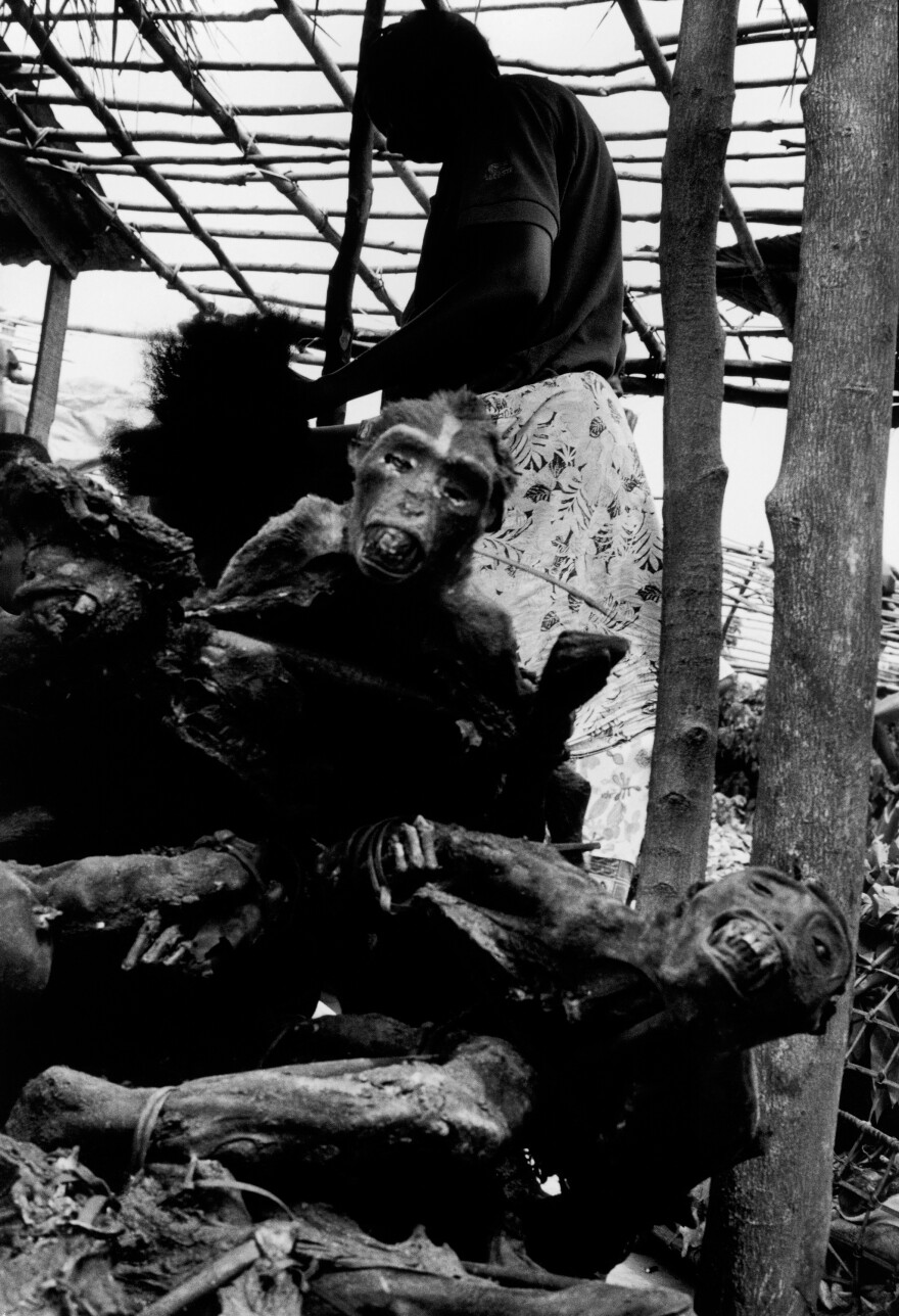 Smoked monkey is one of the bush meat items sold at a market in the Congo.