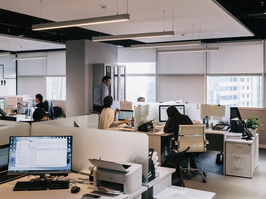 A group of people work at their cubicles in an open office space.
