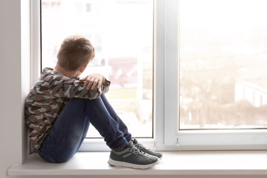 Some Florida Panhandle counties will receive additional money to boost mental health services for children.