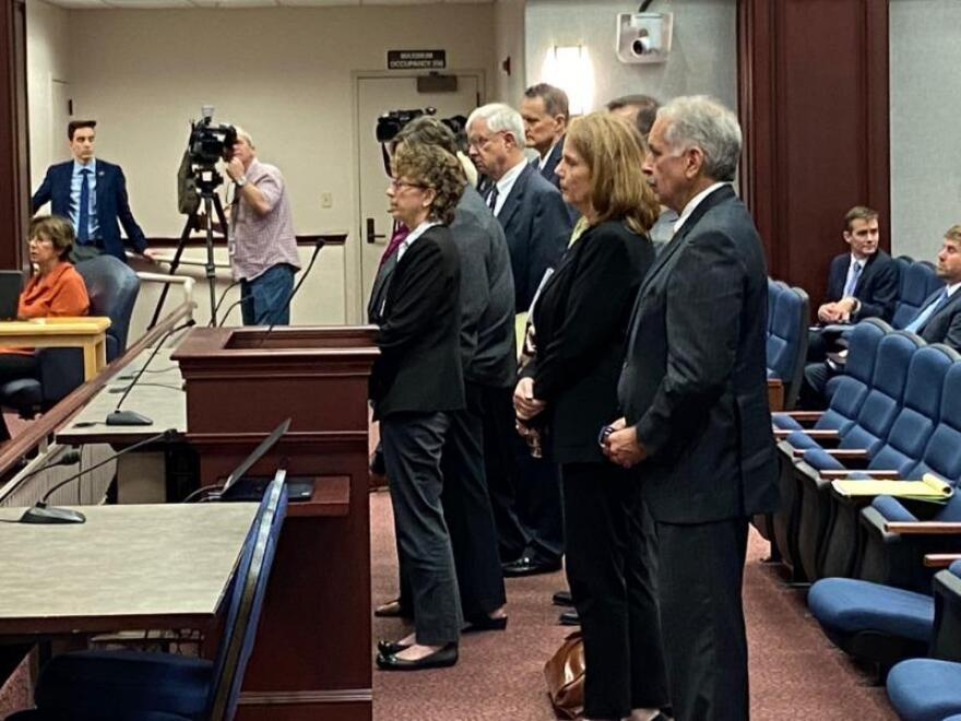 members of the Florida Coalition Against Domestic Violence speaking before a house committee