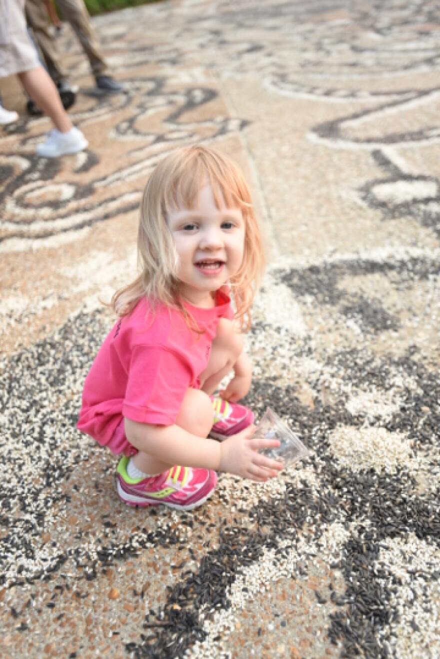 A child enjoys Jessica Witte's seed-art project in Belleville in August 2015.