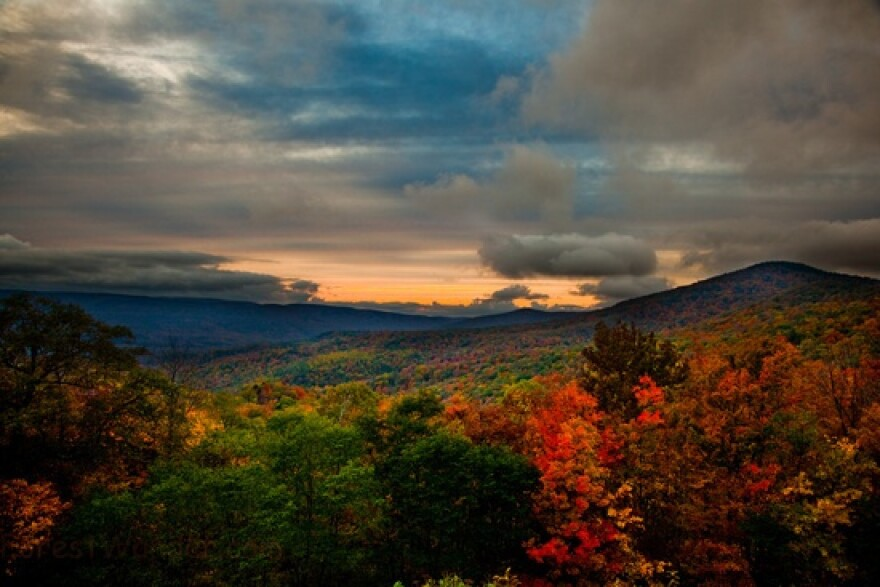 West_Virginia_Fall_Foilage.jpg