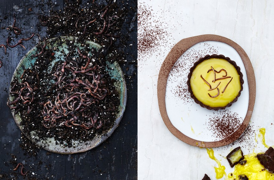 Left, earthworms. Right, lemon curd tart in chocolate and earthworm crust, with a crispy earthworm topping.