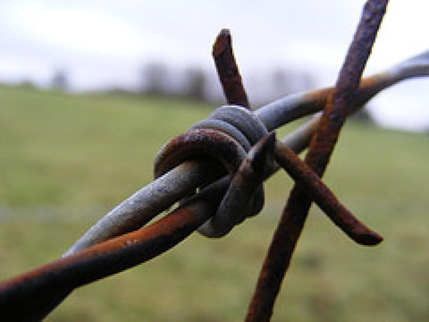 Barb Wire - benandbarnet.jpg