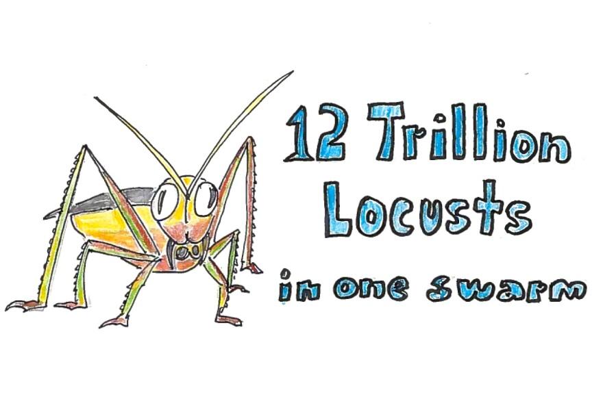 Imagine 12 trillion locusts in one swarm.