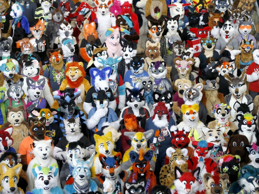 Anthrocon participants, as they gathered in Pittsburgh in 2013.