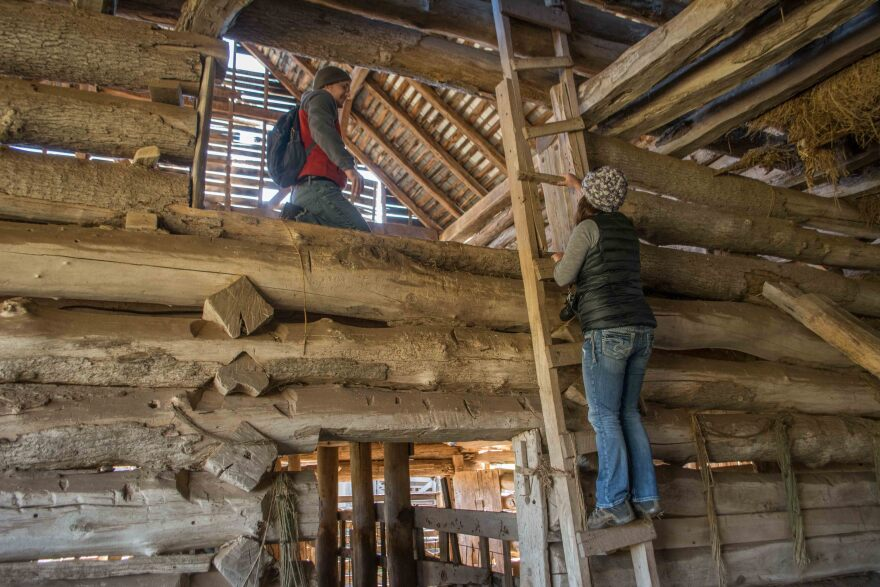 historic_timbers_nov_2015-003.jpg