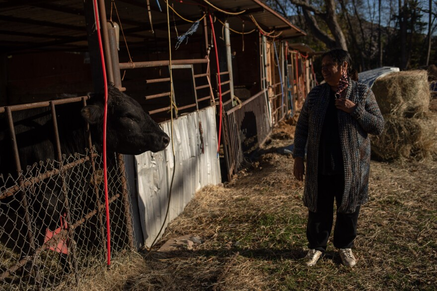 Garcia greets Beck, the bull in her backyard, whom she's cared for the last 18 months.