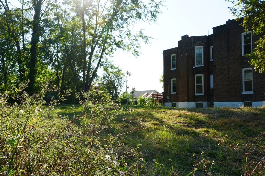 A vacant lot on Finney Avenue photographed on October 8, 2019. The Neighborhood Lot Maintenance pilot program aims to chip away at the issue of overgrown city-owned vacant land by hiring private contractors to maintain the land.