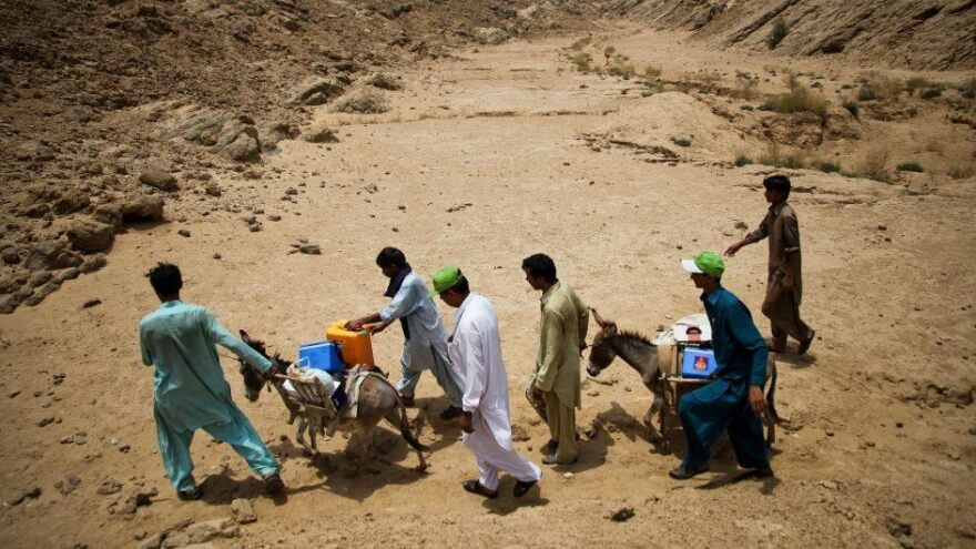 Health workers transport the polio vaccine by donkey in southeastern Pakistan.