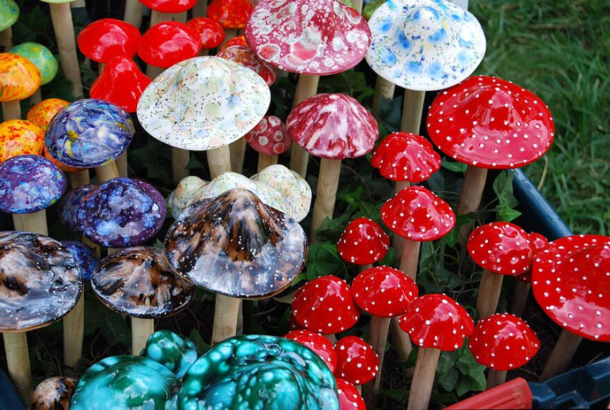 An array of colorful mushrooms in a field of grass.