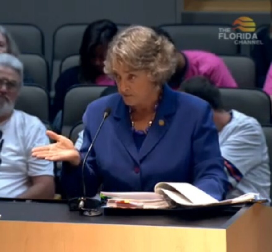 Sen. Nancy Detert (R-Venice) speaking during the Senate Fiscal Policy Committee meeting Monday.
