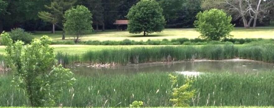 Arboretum Park in the Avondale Area of Canton