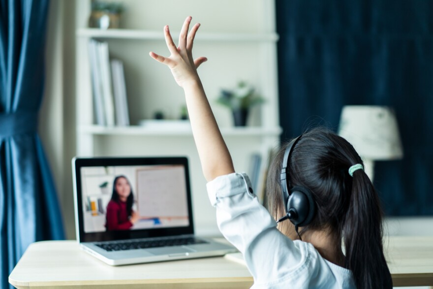 Young student raising hand in online virtual learning class