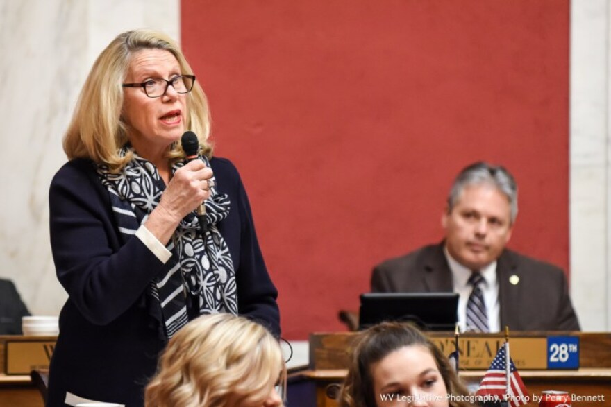 Del. Carol Miller, Republican candidate for West Virginia's 3rd Congressional District, speaks on the floor of the West Virginia House of Delegates.