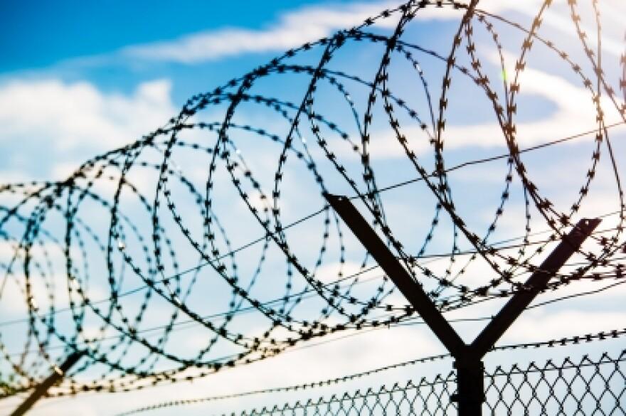 franky242_barbed_wire_prison_jail_freedigitalphotosnet.jpg