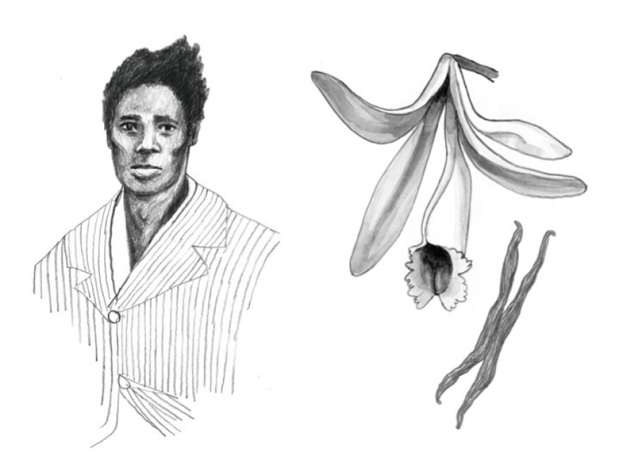 """Slave Edmond Albius and a vanilla plant: """"Vanilla is here thanks to a 12-year-old slave who figured out a botanical secret no one else knew,"""" Lohman writes."""