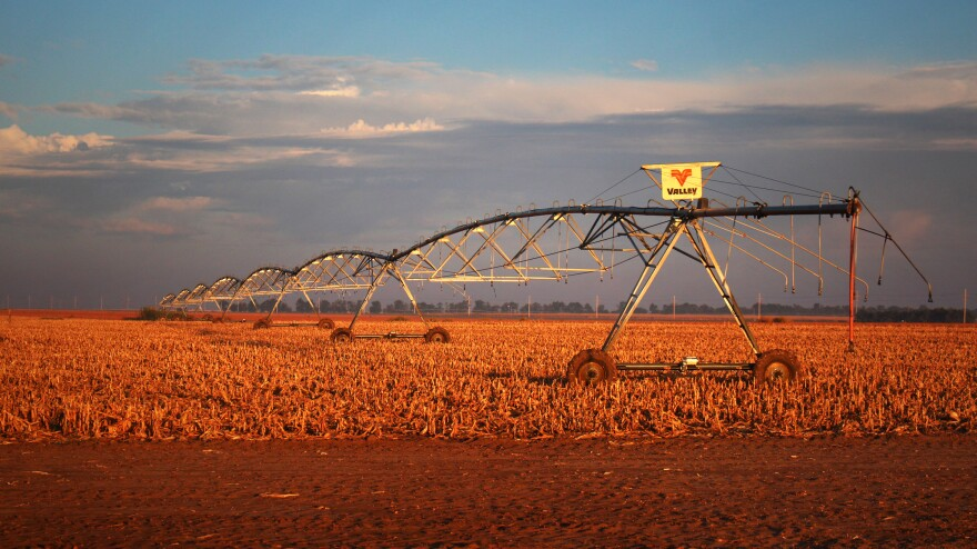 The long arms of pivot irrigation rigs deliver water from the Ogallala Aquifer to circular fields of corn in northwestern Kansas.