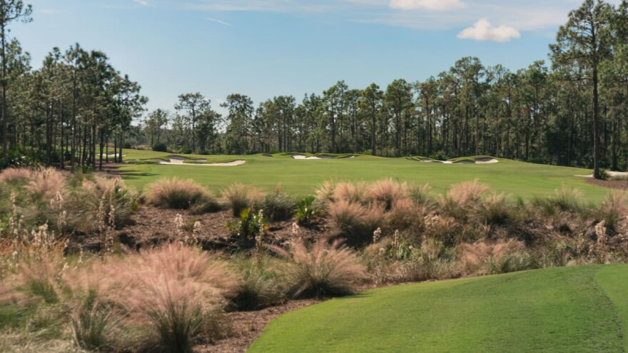 golf hole surrounded by trees, bunkers, and brush