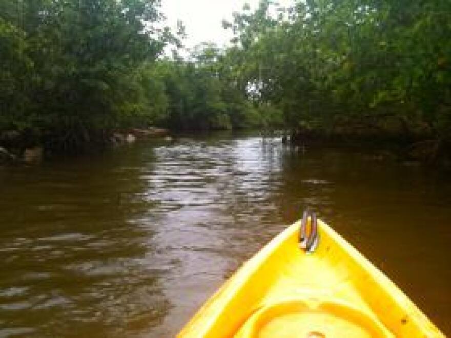 Oleta River State Park in North Miami.
