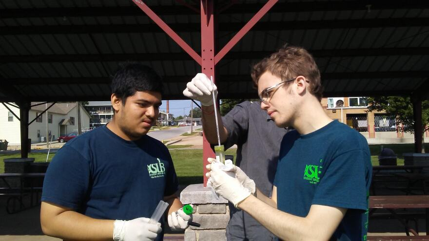 Missouri S&T students Dibbya Barua and Justin Adler look at a water sample taken from Schuman Park Lake in Rolla, Missouri on July 26, 2019.