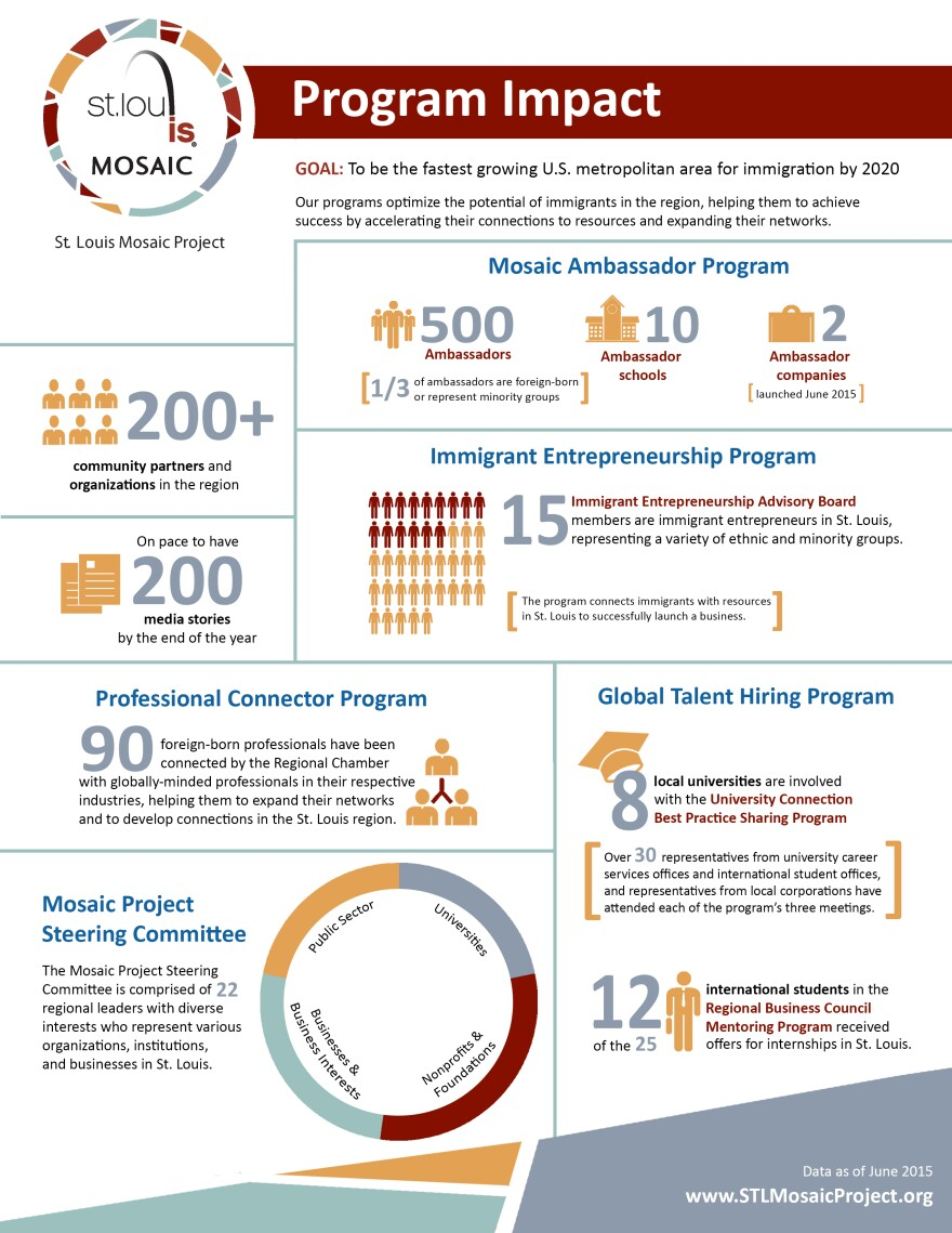 Mosaic Project Infographic