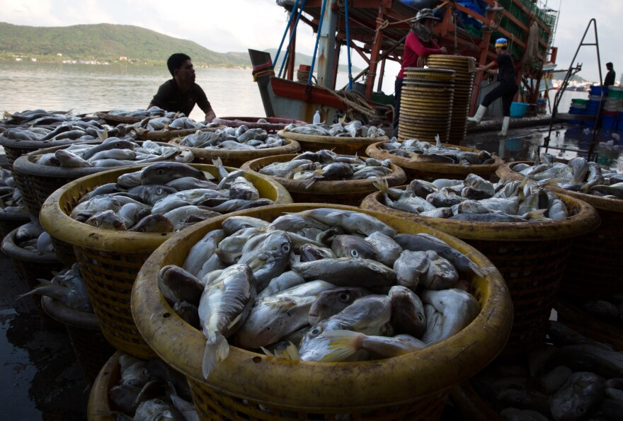 Barrels of fish sit on a dock after being unloaded from a boat in Songkhla, Thailand, in February 2016.