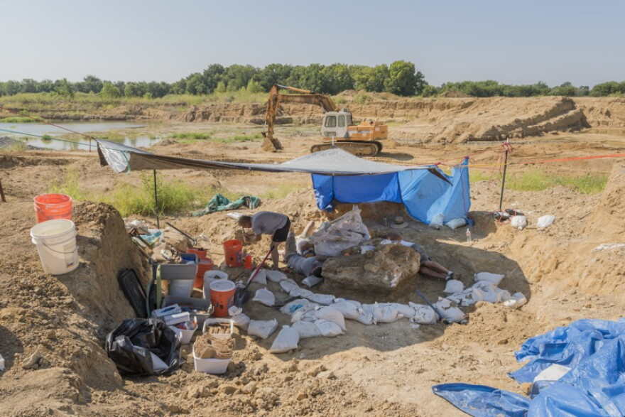 Archaeological_dig_on_the_site_of_the_discovery_of_a_Columbian_mammoth_near_Italy_Texas_LCCN2015630994.jpg