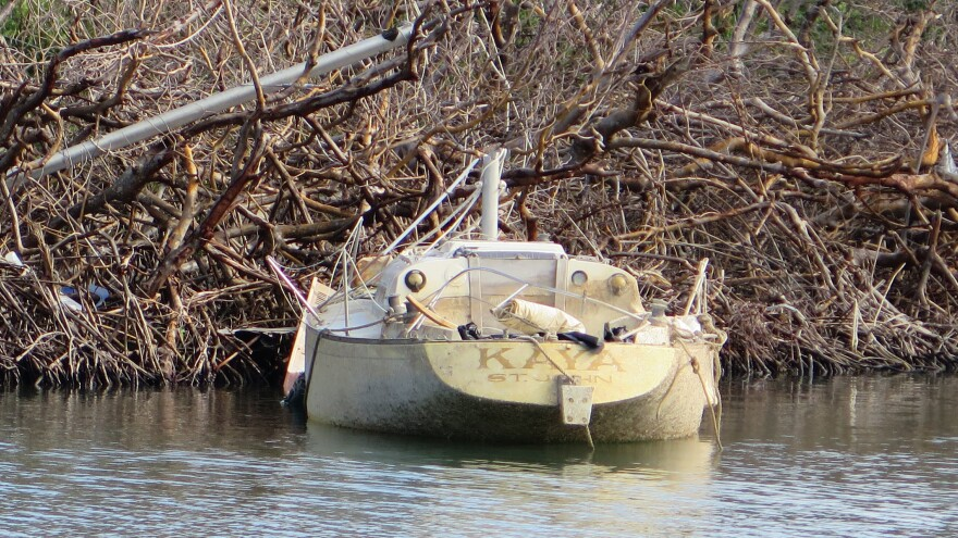 On St. John, the last boats to be removed are in environmentally sensitive areas. This sailboat is near an active Green Heron nest.