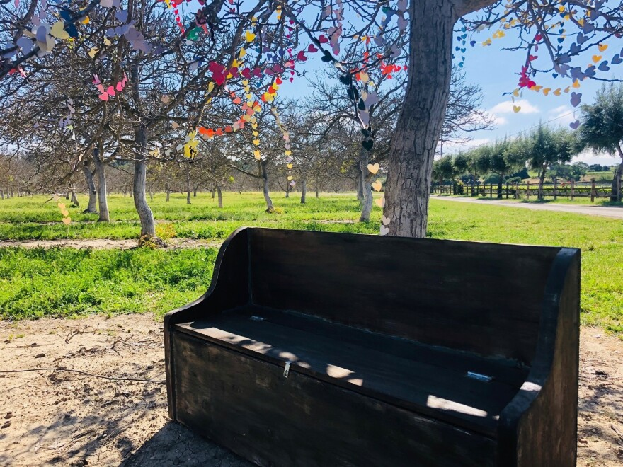 "The bench underneath the tree encourages passersby to sit and reflect. ""Each heart is not just one person, but a whole family connected to that one person who is gone,"" Guynn says."