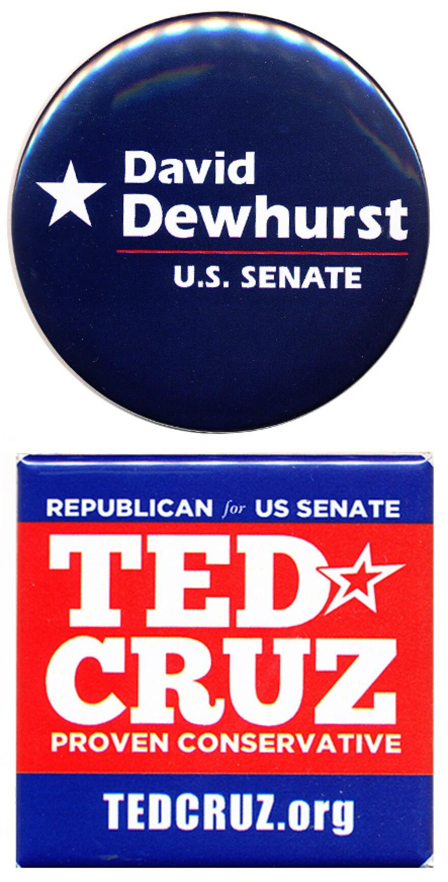 Texas Senate GOP runoff
