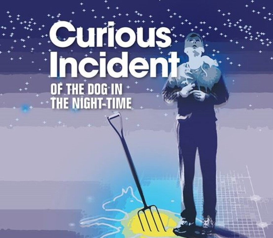 curious_incident_for_web.jpg