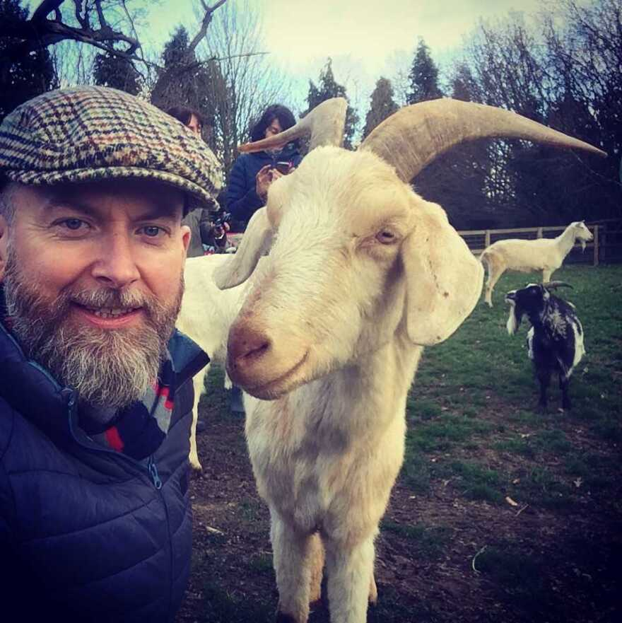 Alan McElligott, a professor of animal behavior, is eager to learn more about goat-human interactions.