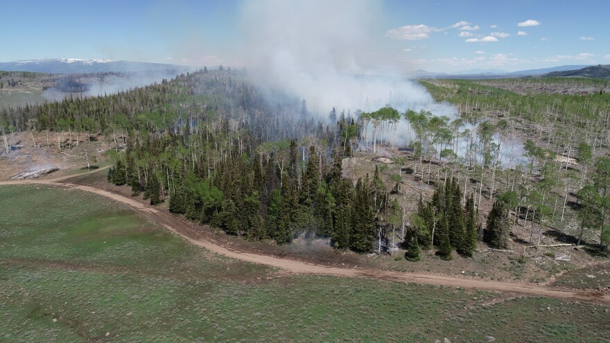 A shot of a prescribed burn taking place earlier this year at the Fishlake National Forest in Utah.
