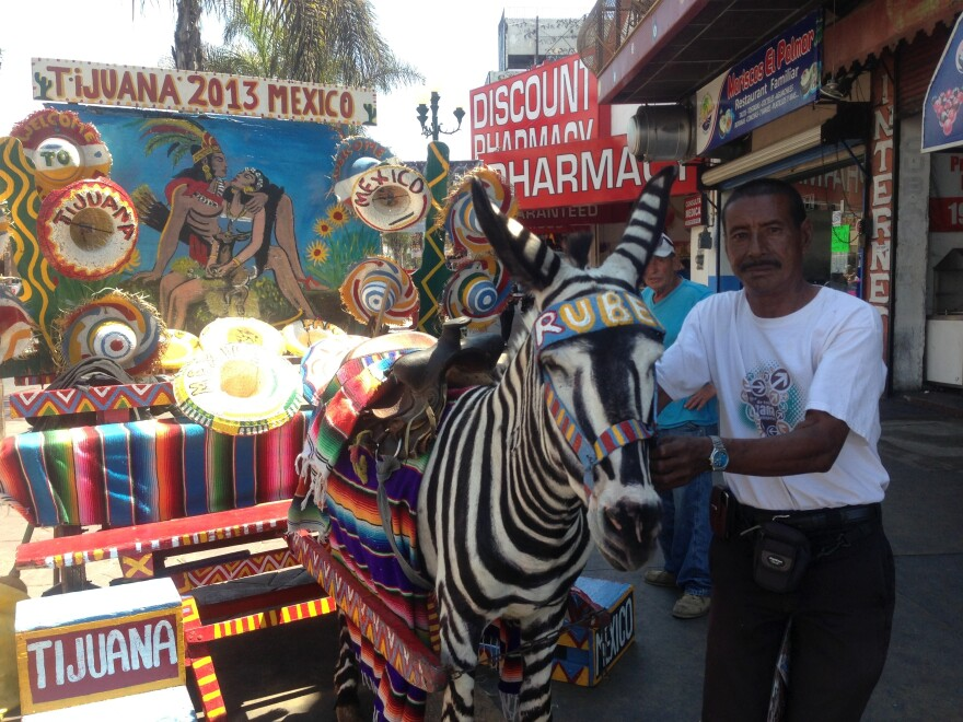 """Victor Reyes has been photographing tourists atop Tijuana's """"zonkeys"""" since he was 12, and says at one time he could earn $150 a day. Now, he's lucky to earn $15, he says. Here, Reyes poses with his donkey, Ruben."""