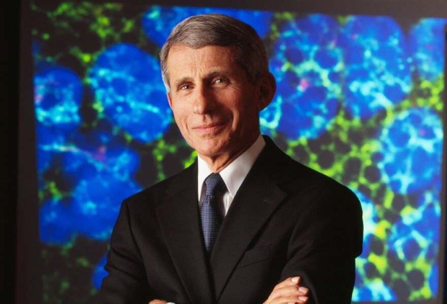 Dr. Anthony Fauci is director of the National Institute of Allergy and Infectious Diseases at the National Institutes of Health