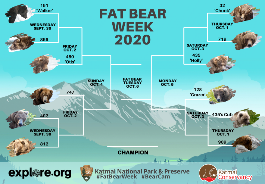 Which fat bear will win the Katmai National Park and Preserve's bracket?