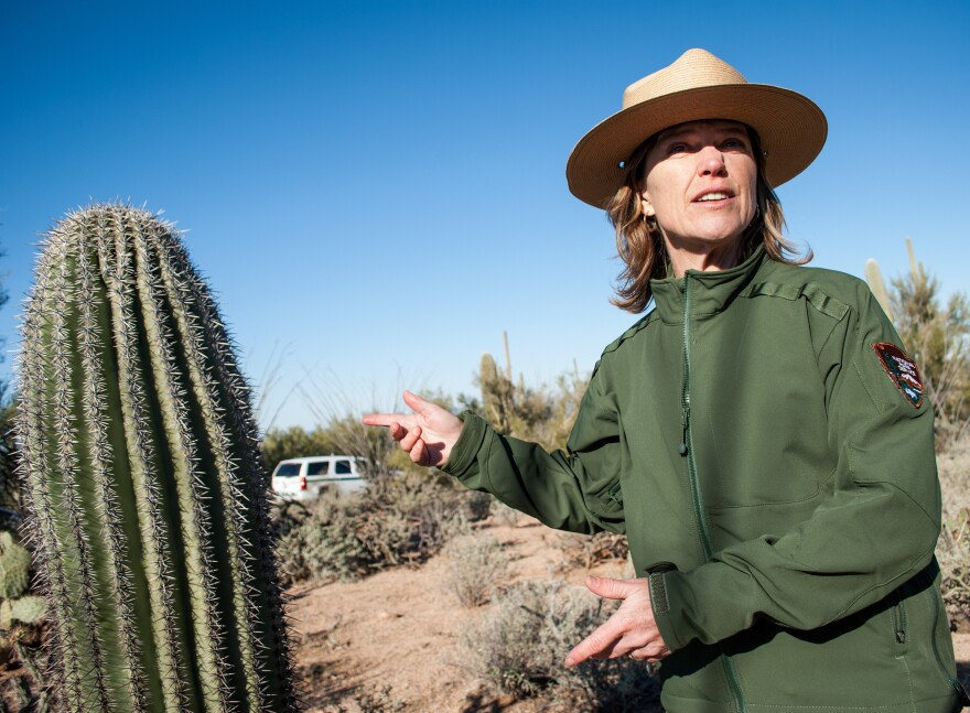 Darla Sidles has been superintendent at Saguaro National Park since 2009. Before, she worked at Independence National Historical Park in Philadelphia, where she says the demographics of the visitors and workforce were far more diverse. She's hoping to mimic that at Saguaro.