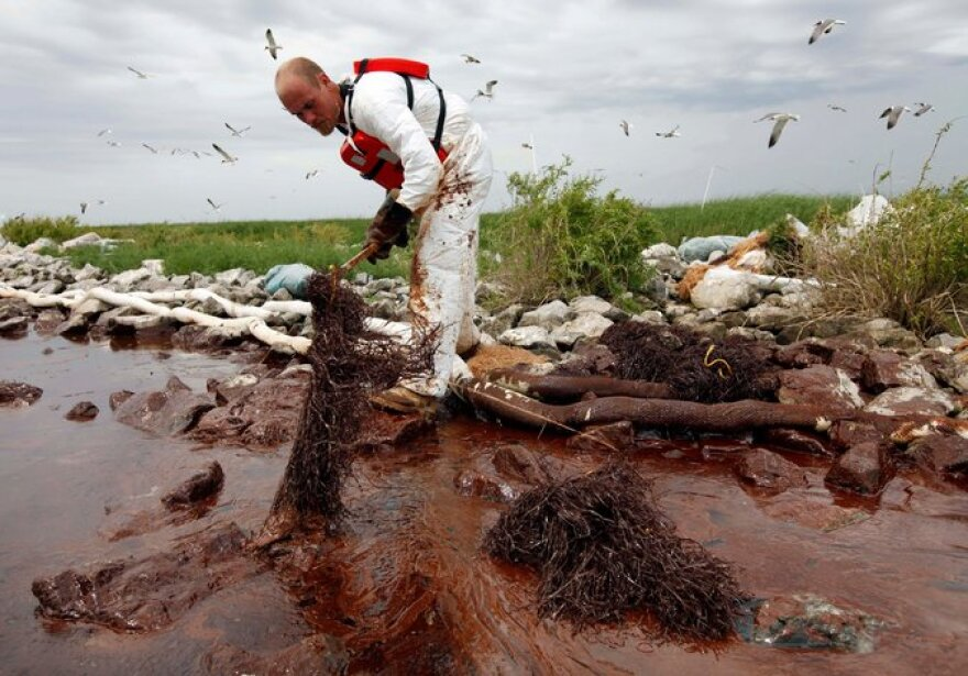 A cleanup worker absorbed spilled oil in Plaquemines Parish, La., in 2010.