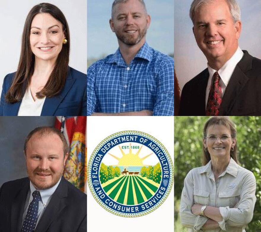 Florida Commissioner of Ag candidates: On top, Democrats Nikki Fried, Roy David Walker and Jeffery Porter. Bottom: Republicans Matt Caldwell and Denise Grimsley. Republicans Mike McCalister and Baxter Troutman were unable to participate in the interview.