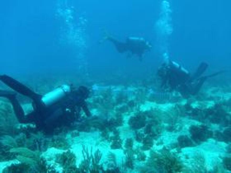 coral_reef_via_fwc_via_flickr.jpg