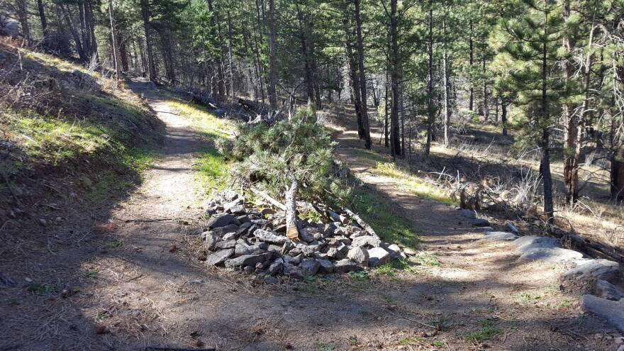 young_gulch_trail_construction_oct2017__22_.jpg