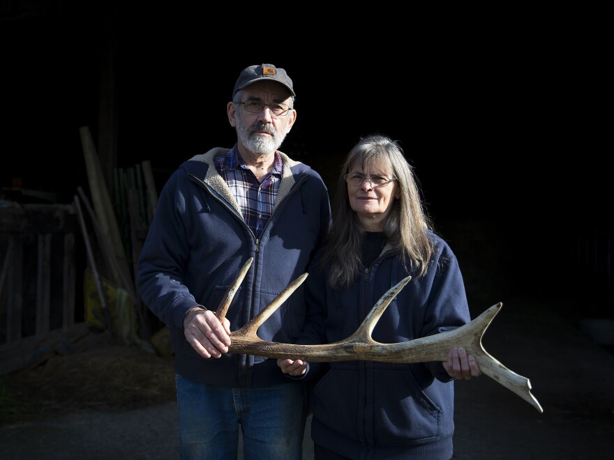 Randy and Aileen Good have farmed in Skagit Valley for four decades. They say elk have damaged their farm and farm equipment.