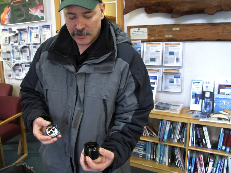 Scott Pegau, a scientist at the Prince William Sound Science Center, studies the effects of spilled oil on the environment in Cordova, Alaska.