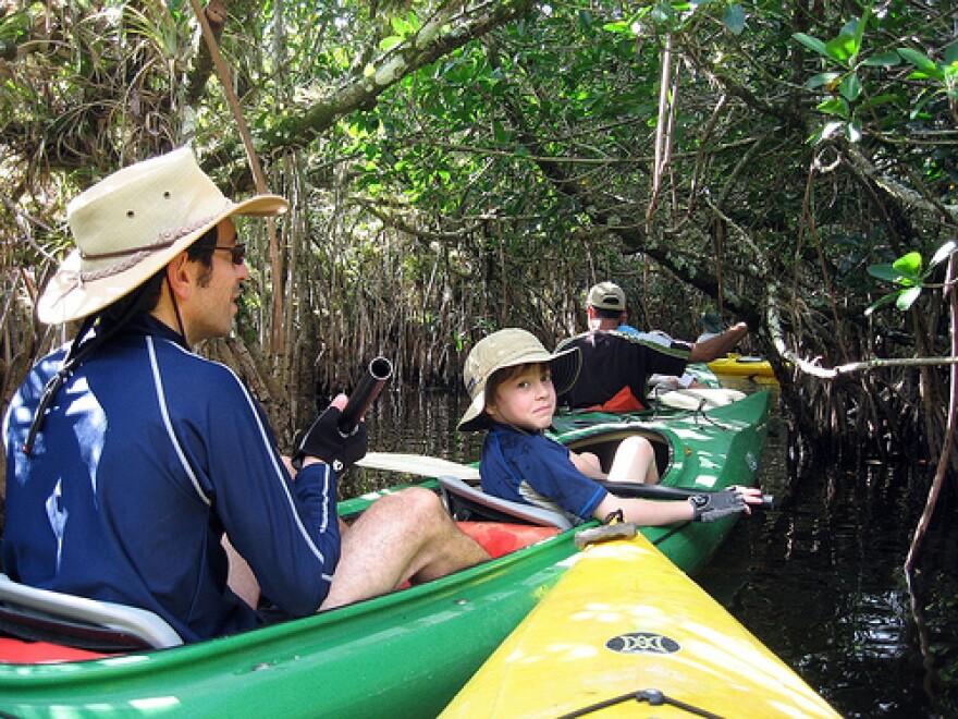 kayaking everglades.jpg