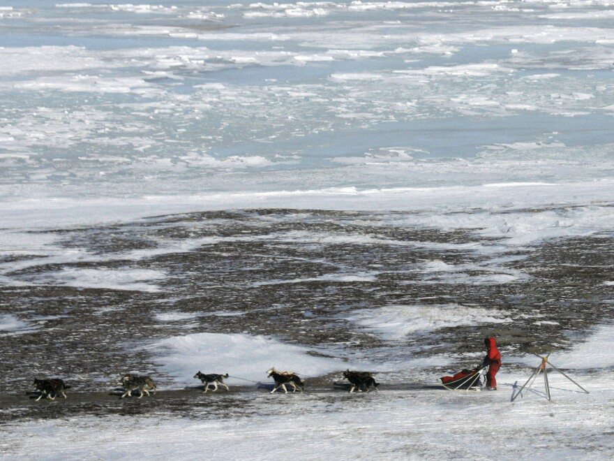 """Lance Mackey drives his dog team along the Bering Sea during the 2007 Iditarod. """"There are sections of trail that are over 200 miles with nothing in between,"""" Mackey says. """"Without your dogs, it'd be pretty lonely out there."""""""
