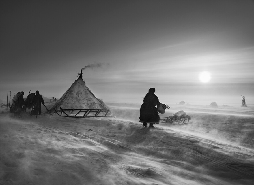 Fierce winds keep even daytime temperatures low inside the Arctic Circle. This scene is from Siberia's Yamal peninsula. 2011.